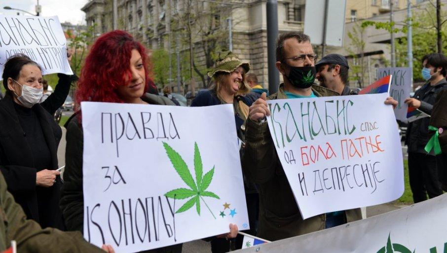 KANABIS ĆE BITI LEGALIZOVAN: Posle odluke Kancelarije za drogu pri UN, Srbija će menjati zakonsku regulativu, odlučivaće stručnjaci