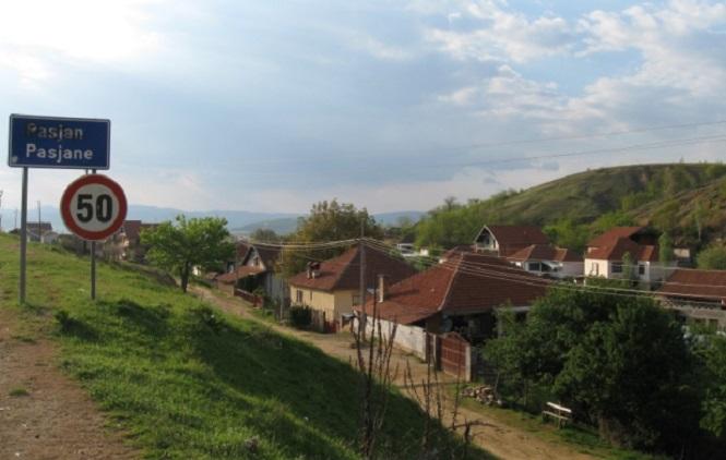 Село Пасјане