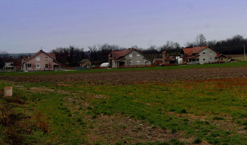 Земљу је книнским Србима у селу Вучић поклонио Милоје Живановић