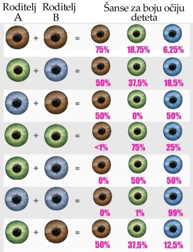 Резултат слика за nasledjivanje boje ociju