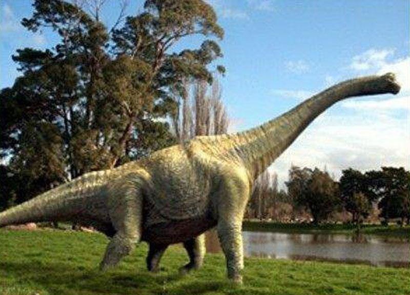 Da Li Je Ovo Dokaz Da Su Dinosaurusi živeli Sa Ljudima Kreacionista Tvrdi Prava Istina Zataškana