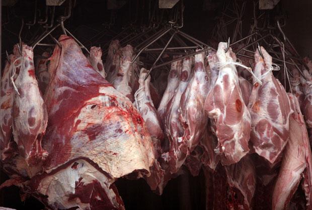 Pada izvoz hrane