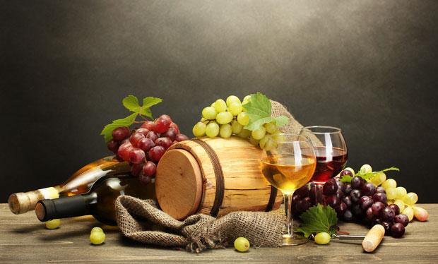 U Diseldorfu - srpsko vino, privreda i diplomatija