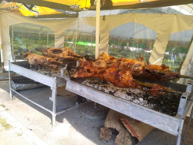 Spasovdanski kup u Trstu: Najveće okupljanje srpske dijaspore u Evropi