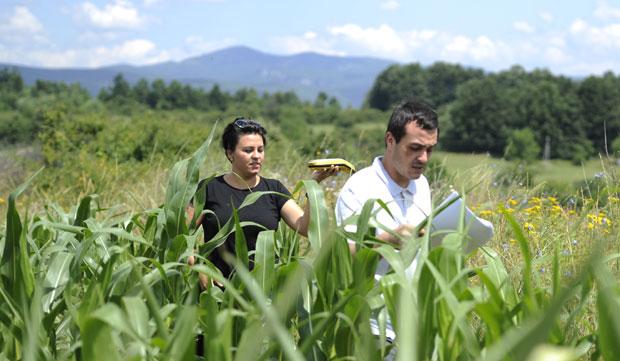 Bespovratna sredstva zemljoradničkim i poljoprivrednim zadrugama